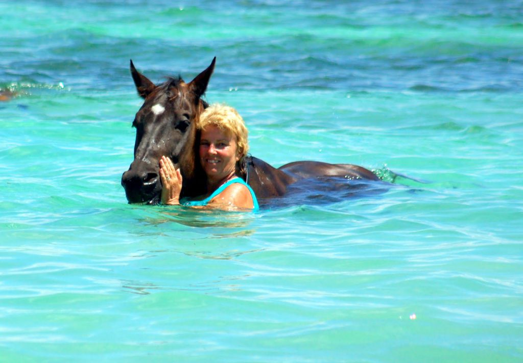 Swim with horses on Healing with Horses luxury retreats www.jessicamcgregorjohnson.com